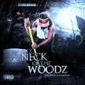 Steve Woodz - My Neck Of The Woodz mixtape cover art