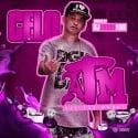 Celo Deniro - A.T.M. (All The Money) mixtape cover art