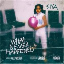 Siya - What Never Happened mixtape cover art