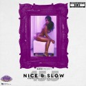 Nice & Slow 45.5 (Bad Girl Edition) (Chopped Not Slopped) mixtape cover art