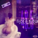 Nice & Slow 48.5 (Erotic Pleasure) mixtape cover art