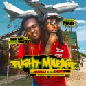 Big Fabe & Money Mall - Flight Mileage mixtape cover art
