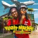 Big Fabe & Money Mall - Flight Mileage mixtape cover art