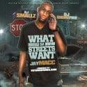 Jay Macc - What Da Streets Want mixtape cover art