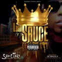 Lord Sauce - Sauce Talk (Follow The Drip) mixtape cover art
