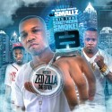 This That Southern Smoke! 8 (Hosted By Zed Zilla) mixtape cover art