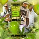 This That Southern Smoke! 9 (Hosted By Young Buck) mixtape cover art