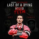 Jay Chris - Last Of A Dying Teen mixtape cover art