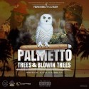 C2 - Palmetto Trees & Blowin Trees mixtape cover art