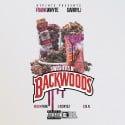 Frank Whyte & Darryl J - Swishers N Backwoods mixtape cover art