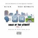 Voice Of The Streetz mixtape cover art