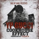 Young Protege - Cookhouse Effect mixtape cover art