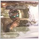 Dam-Funk - STFU mixtape cover art