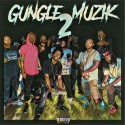 Gungle Muzik 2 mixtape cover art