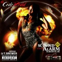 Code Redd - Sound The Alarm mixtape cover art