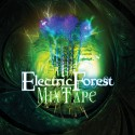Electric Forest Festival 2013 Mixtape mixtape cover art