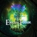 Electric Forest Festival 2013 Mixtape mixtape cover art