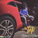 Wyld PT - Back 2 Work mixtape cover art