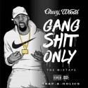 Chevy Woods - Gang Shit mixtape cover art