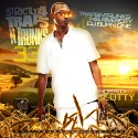 Strictly 4 The Traps N Trunks 33 (Hosted By Scotty) mixtape cover art