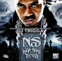 Nas - Hip Hop Is Dead mixtape cover art