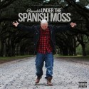 Branddo - Under The Spanish Moss mixtape cover art