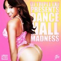 Dancehall Madness mixtape cover art