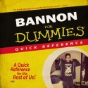 Lee Bannon - Bannon For Dummies mixtape cover art