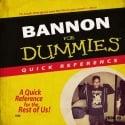 Lee Bannon - Bannon For Dummies mixtape cover art