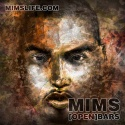 Mims - Open Bars mixtape cover art