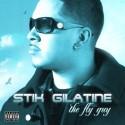 Stik Gilatine - The Fly Guy mixtape cover art