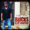 Troy Ave - Bricks In My Backpack (The Harry Powder Story) mixtape cover art