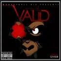 Monkeyball - Valid mixtape cover art