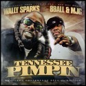 8Ball & MJG - Tennessee Pimpin' (Southern Conference Special Edition) mixtape cover art