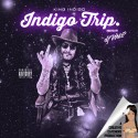 King Indigo - Indigo Trip mixtape cover art