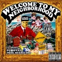P2TheGoldMa$k - Welcome To My Neighborhood mixtape cover art