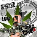 Lil' Lee - I Dew Dis 2 mixtape cover art