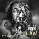 Rasta B - Dreads Of A Lion mixtape cover art